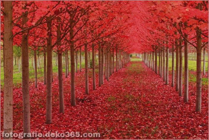 25 atemberaubende Landschaften (1)