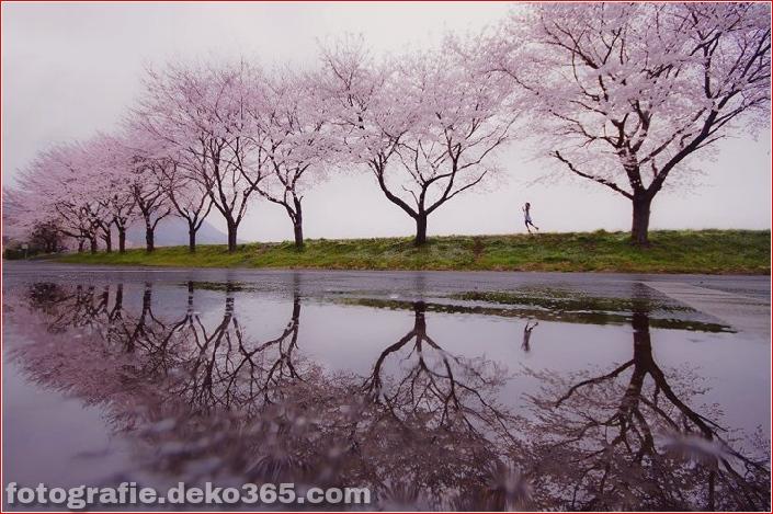 25 atemberaubende Landschaften (5)