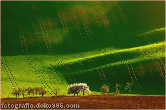 25 atemberaubende Landschaften (7)