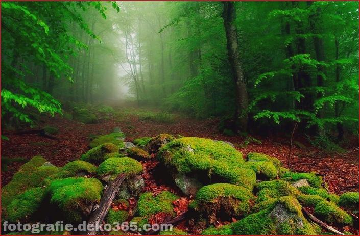 25 atemberaubende Landschaften (9)