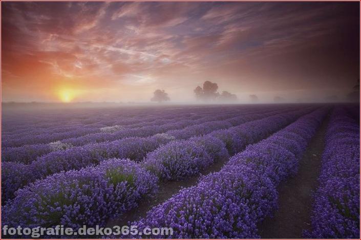 25 atemberaubende Landschaften (14)