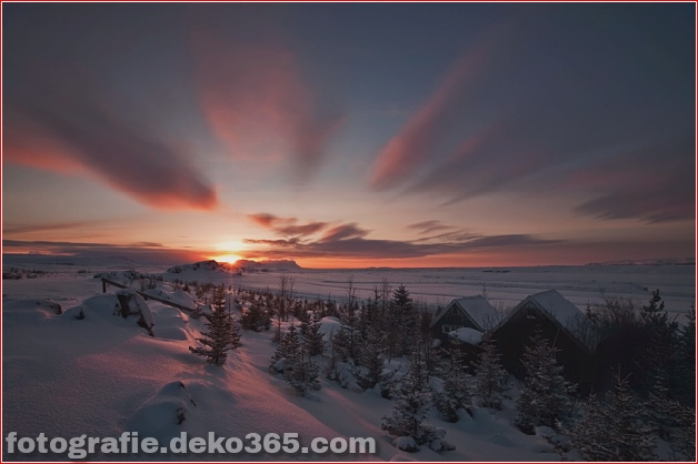 Winter Photographs (3)