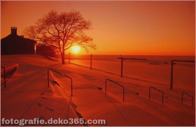 Winter Photographs (17)