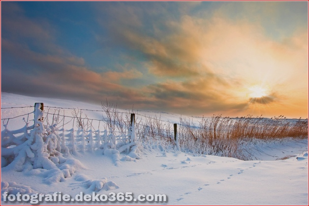 Winter Photographs (22)