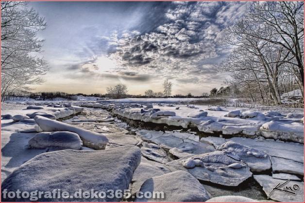 Winter Photographs (24)