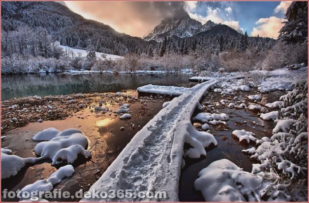 Winter Photographs (29)