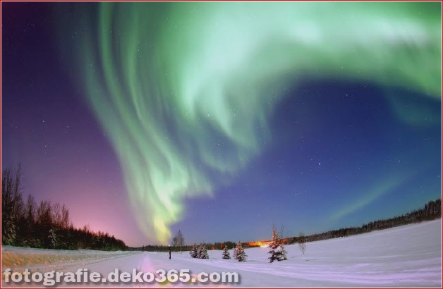 Winter Photographs (30)