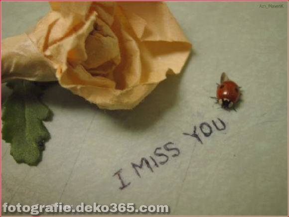 Ich vermisse dich so sehr (3)