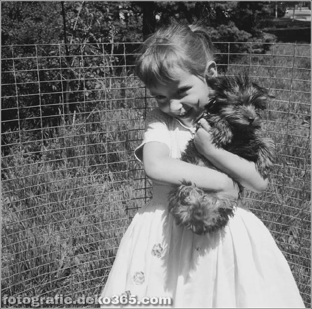 Alte Bilder von Hunden_5c905c99362d8.jpg