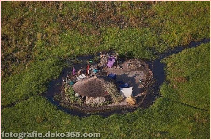 Amazonas-Flussauen – Sumpf_5c905ede8ce9a.jpg