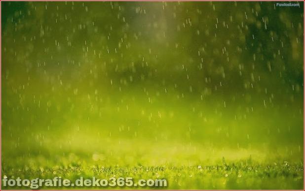 Ausgezeichnete Wallpaper Regen und Sturm (6)
