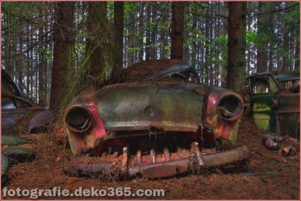 Autofriedhof in Belgien_5c905e2abae98.jpg