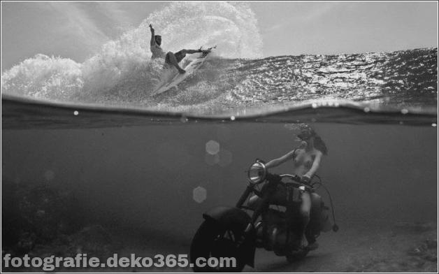 Das Leben im Wasser mit Bruce Mozert (4)