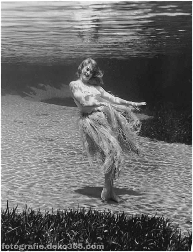 Das Leben im Wasser mit Bruce Mozert (6)