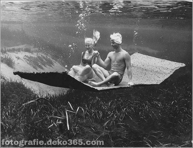 Das Leben im Wasser mit Bruce Mozert (7)