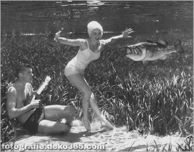 Das Leben im Wasser mit Bruce Mozert (12)