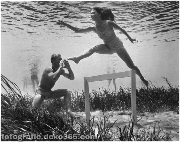 Das Leben im Wasser mit Bruce Mozert (14)