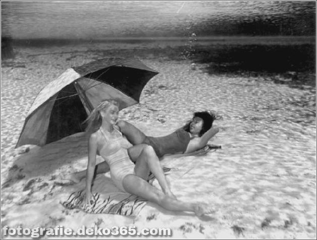 Das Leben im Wasser mit Bruce Mozert (17)