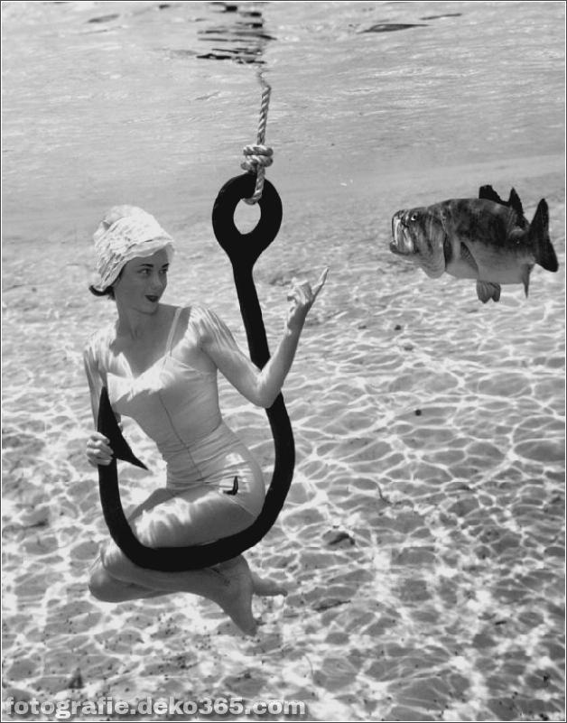 Das Leben im Wasser mit Bruce Mozert (21)