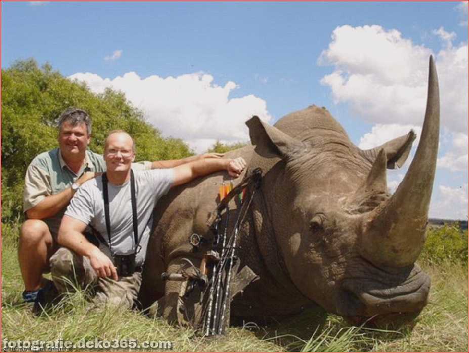 Walter Palmer posiert Jagd Tiere (5)