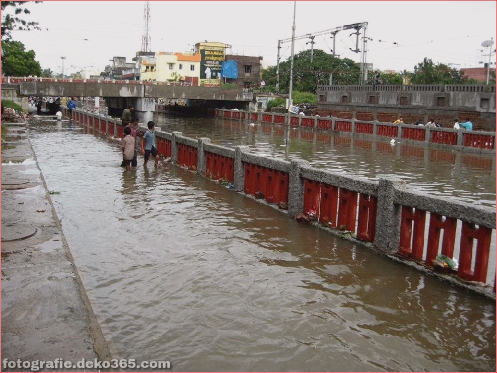Naturzerstörung in Chennai (2)