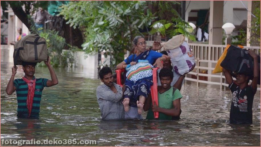 Naturzerstörung in Chennai (3)