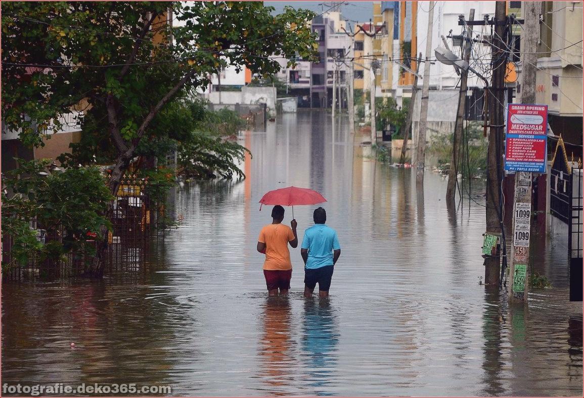 Naturzerstörung in Chennai (4)