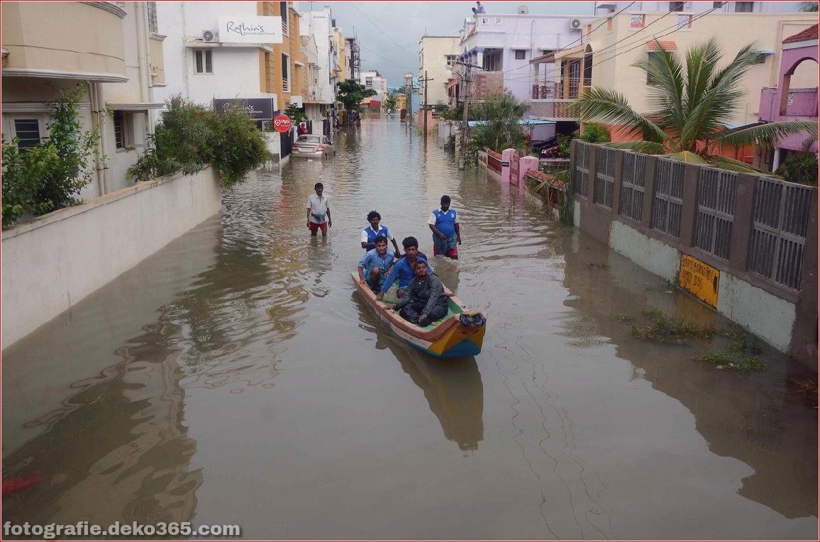 Naturzerstörung in Chennai (5)