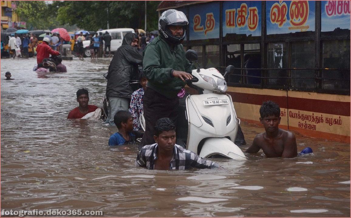 Naturzerstörung in Chennai (6)