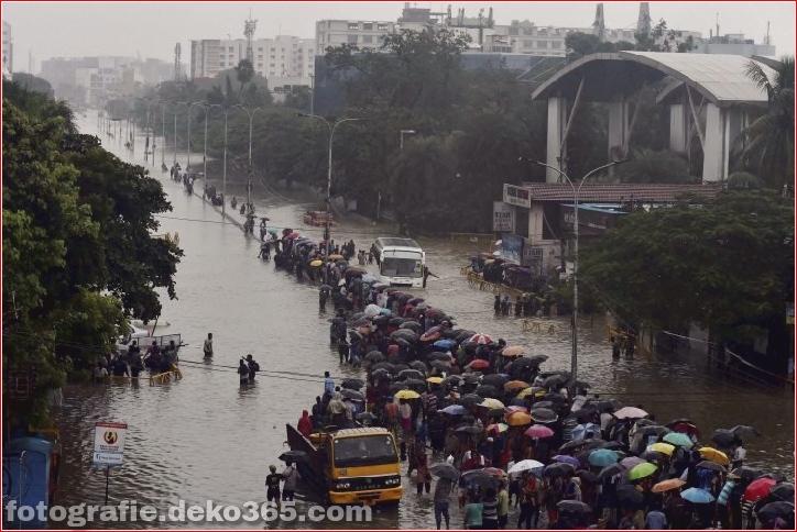Naturzerstörung in Chennai (8)