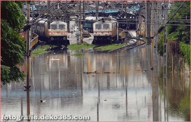 Naturzerstörung in Chennai (10)