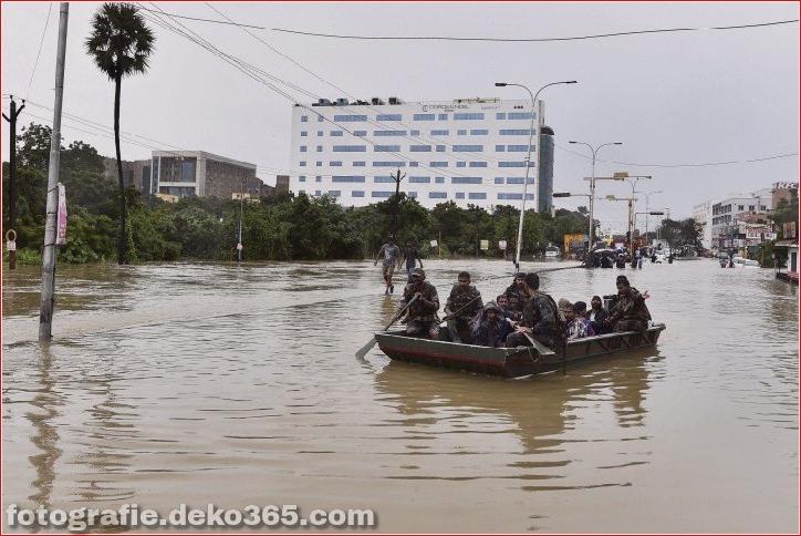 Naturzerstörung in Chennai (11)