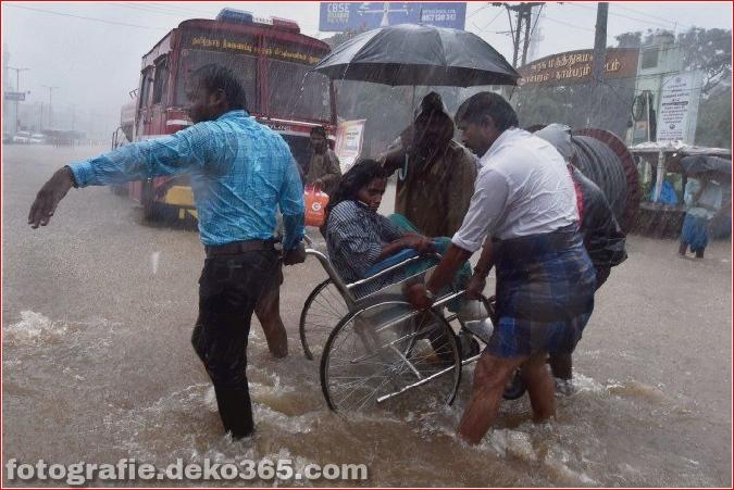 Naturzerstörung in Chennai (16)