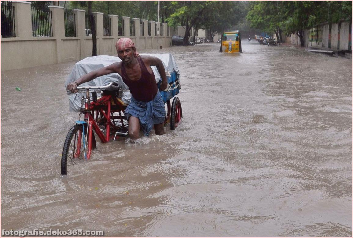 Chennai Rain_5c90008867a08.jpg