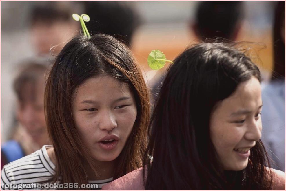 chinesische haarnadel (7)