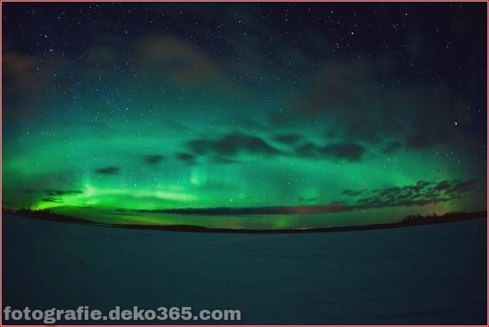 Auroras - Licht der Nacht (1)