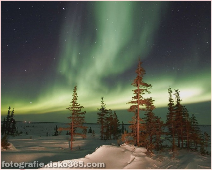 Auroras - Licht der Nacht (4)