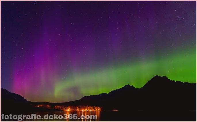 Auroras - Licht der Nacht (5)
