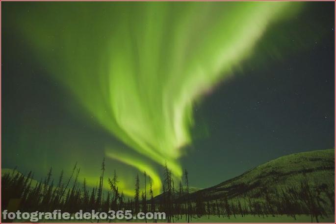 Auroras - Licht der Nacht (7)