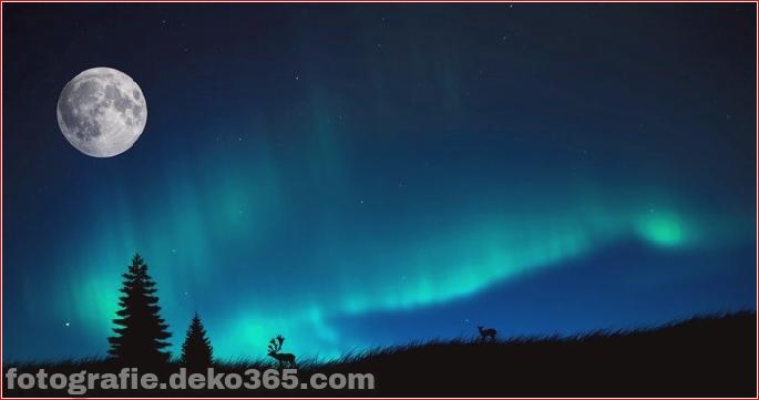Auroras - Licht der Nacht (10)