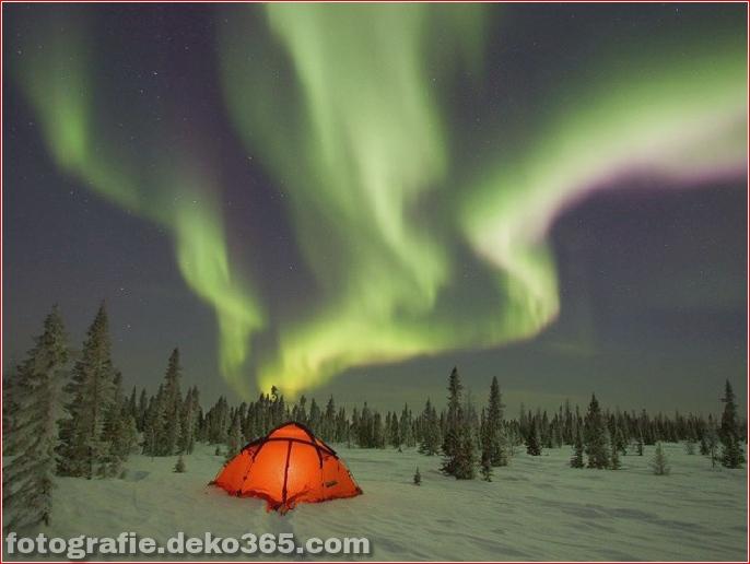 Auroras - Licht der Nacht (14)