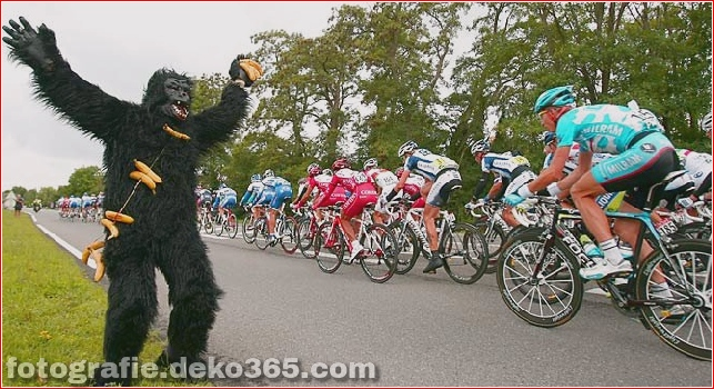 Tour de France lustige Bilder (18)