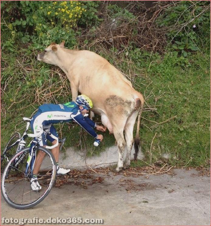 Tour de France lustige Bilder (33)