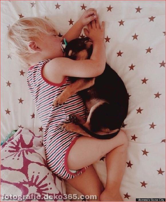 Eine wunderbare Geschichte von Liebe und Schlaf!_5c903db0b66aa.jpg