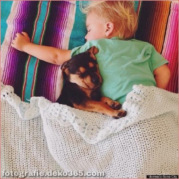Eine wunderbare Geschichte von Liebe und Schlaf! (5)