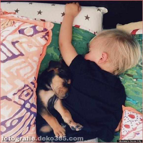 Eine wunderbare Geschichte von Liebe und Schlaf!_5c903db668ae5.jpg