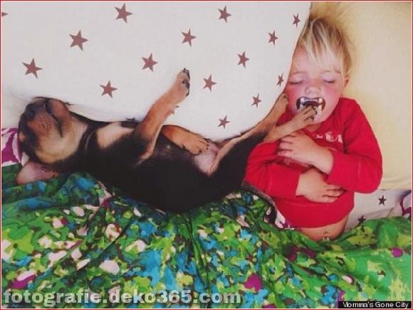 Eine wunderbare Geschichte von Liebe und Schlaf! (11)