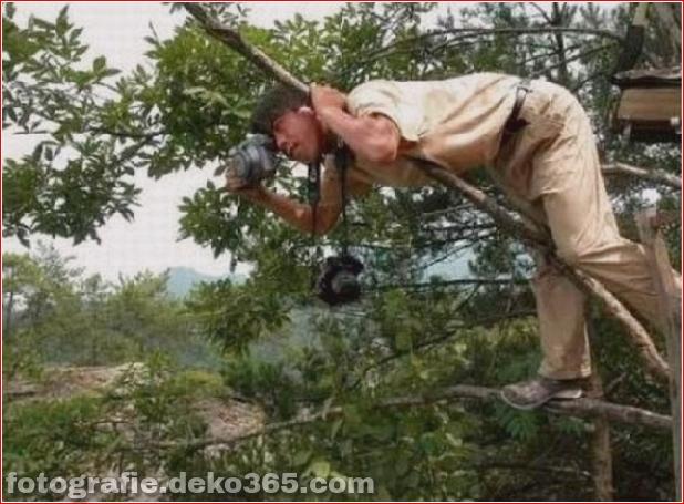Eventuell schwierige Arbeit des Fotografen_5c904890a7199.jpg