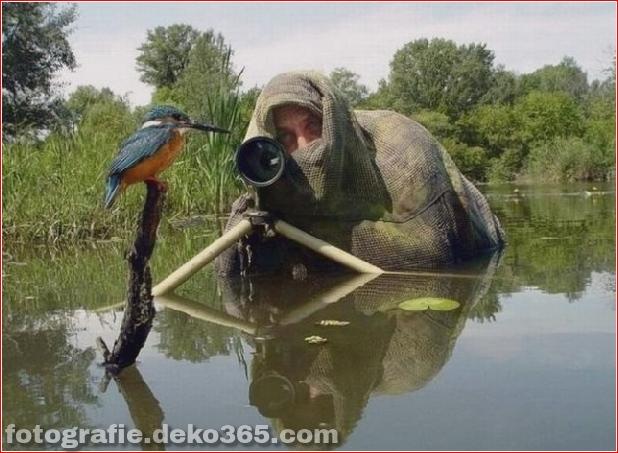 Eventuell schwierige Arbeit des Fotografen (8)