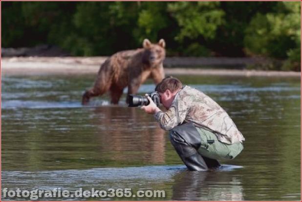 Eventuell schwierige Arbeit des Fotografen (11)